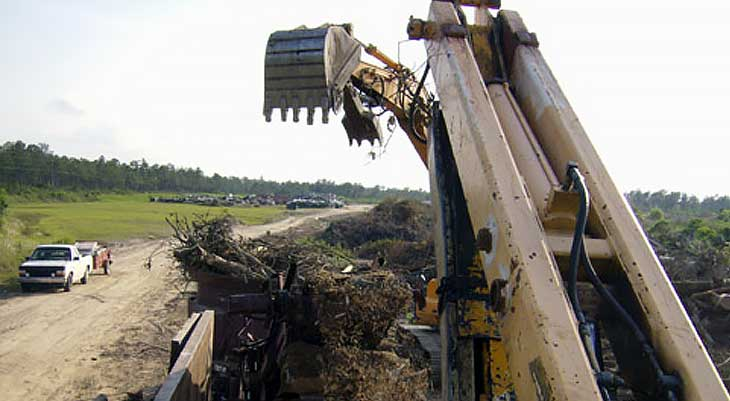 Image of large claw machinery in forest
